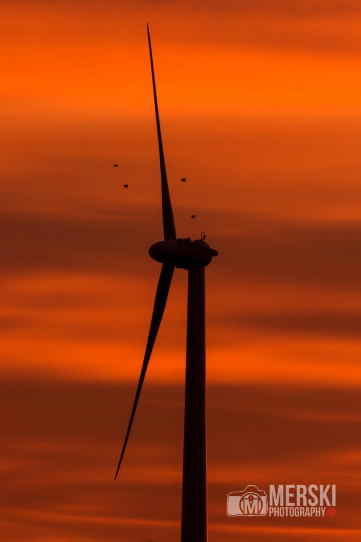2014 - November - Chasing the Sunrise-9135