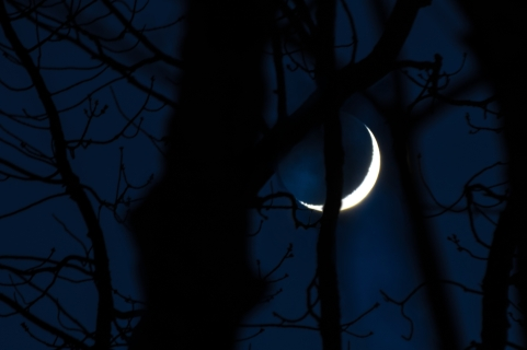 2015 - November - Crescent Moon Setting-Combined