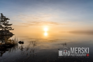 2015 - November - Foggy Sunrise (11 of 11)