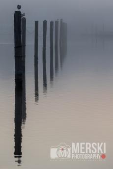 2015 - November - Foggy Sunrise (5 of 11)