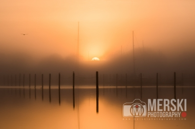 2015 - November - Foggy Sunrise (7 of 11)
