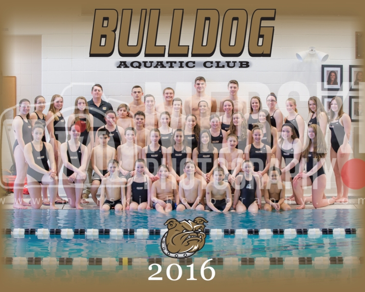 2016 - Bulldogs - Online Team Photo - Watermark (1 of 1)