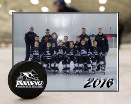 Team H - 07 EMHL - 8x10
