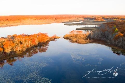 Westward View at Belleville Pond 2