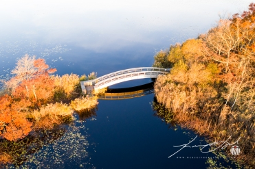 Pedestrian Bridge at Belleville Pond 4