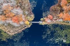 Pedestrian Bridge at Belleville Pond - Bird's Eye View at 250'