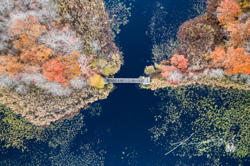 Pedestrian Bridge at Belleville Pond - Bird's Eye View at 250'