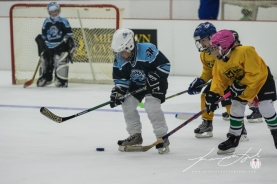 2019 - March - SRI - St. George's Round Robin (50 of 72)