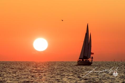 Sunset & Sail - 5